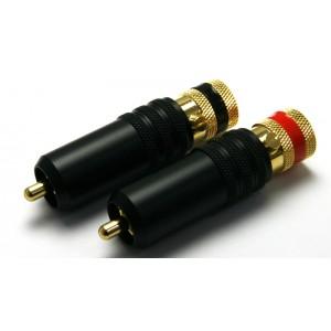 AEC RP-1005